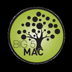 Big 5 Mac