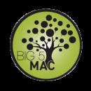 big5mac[1]
